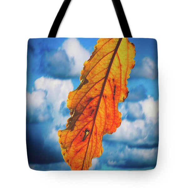 October Leaf B Fine Art Tote Bag
