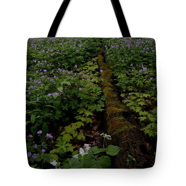 Old And New Tote Bag by Tim Good