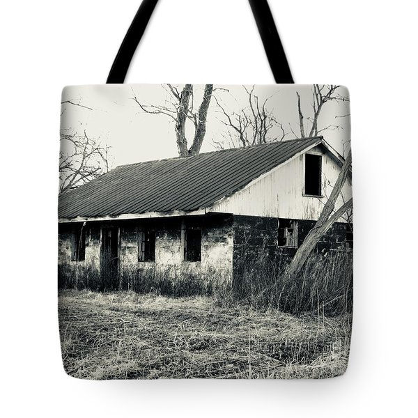 Old Homestead 2 Tote Bag by Michael Krek