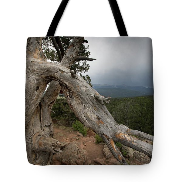Old Tree On The Mountain Tote Bag