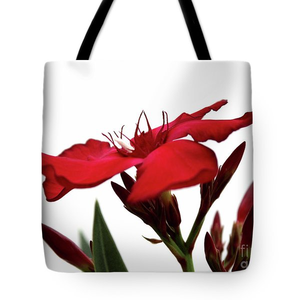 Tote Bag featuring the photograph Oleander Blood-red Velvet 3 by Wilhelm Hufnagl