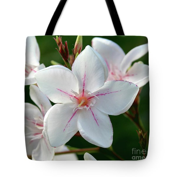 Oleander Harriet Newding  2 Tote Bag