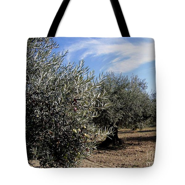 Tote Bag featuring the photograph Olive Trees by Judy Kirouac