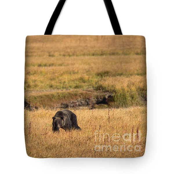 On The Move Tote Bag by Sandy Molinaro