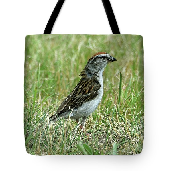 Tote Bag featuring the photograph One Less Insect by Sally Sperry