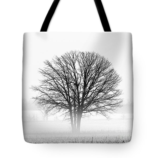 Tote Bag featuring the photograph One... by Nina Stavlund