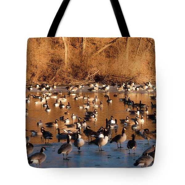 Open Water Tote Bag