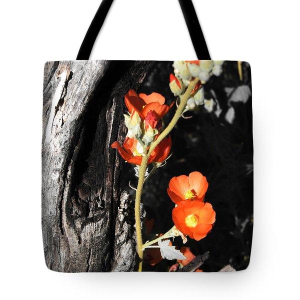 Orange Beauty Tote Bag