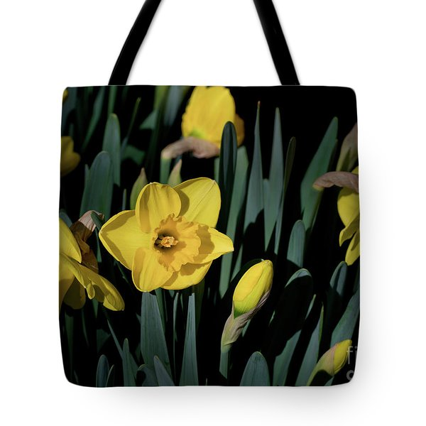 Camelot Daffodils Tote Bag