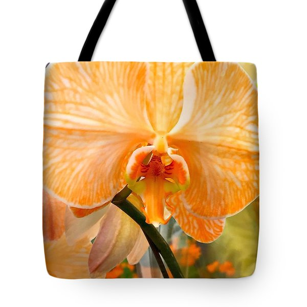 Orange Delight Tote Bag