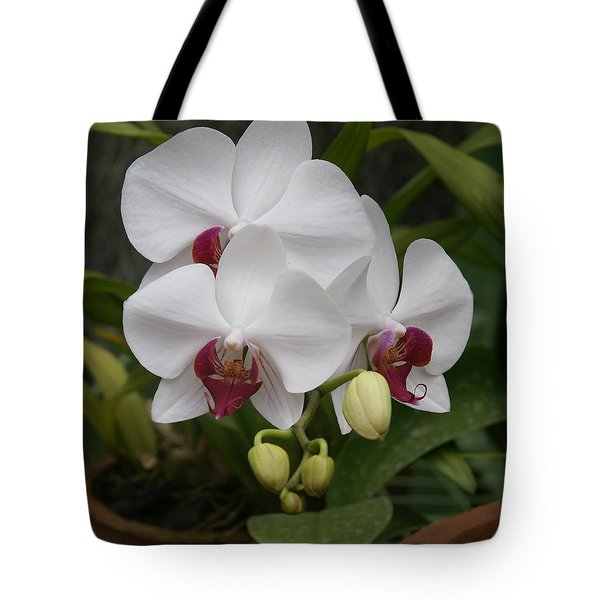 Tote Bag featuring the photograph Orchid by Christian Zesewitz