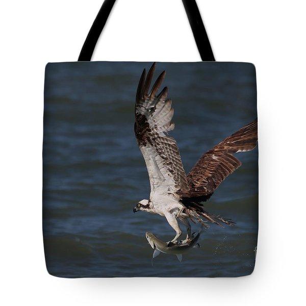 Osprey In Flight Tote Bag