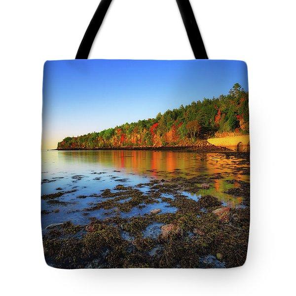 Otter Cove Tote Bag