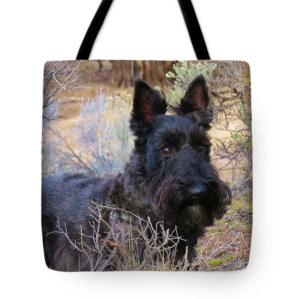 Tote Bag featuring the photograph Always Alert by Michele Penner