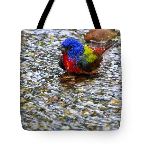 Da223 Painted Bunting Bathtime Daniel Adams Tote Bag