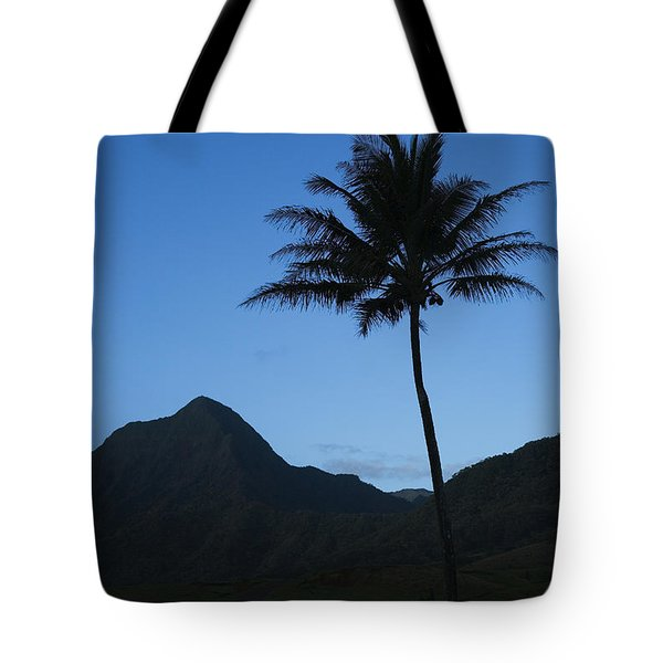 Palm And Blue Sky Tote Bag by Dana Edmunds - Printscapes