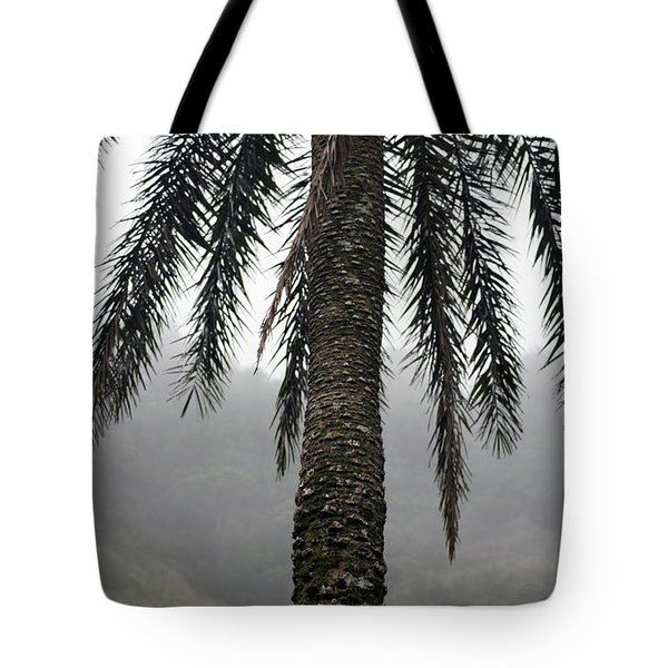 Palm, Koolau Trail, Oahu Tote Bag