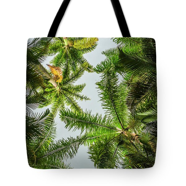 Palm Trees And Blue Sky Tote Bag