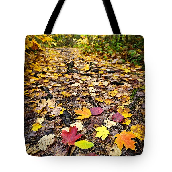 Path In Fall Forest Tote Bag