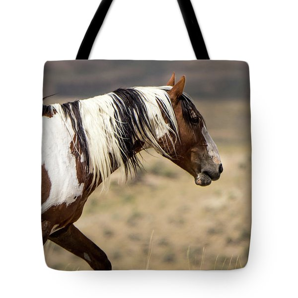 Picasso Of Sand Wash Basin Tote Bag