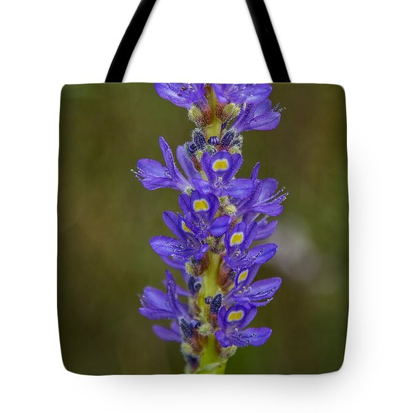 Pickerel Weed Tote Bag