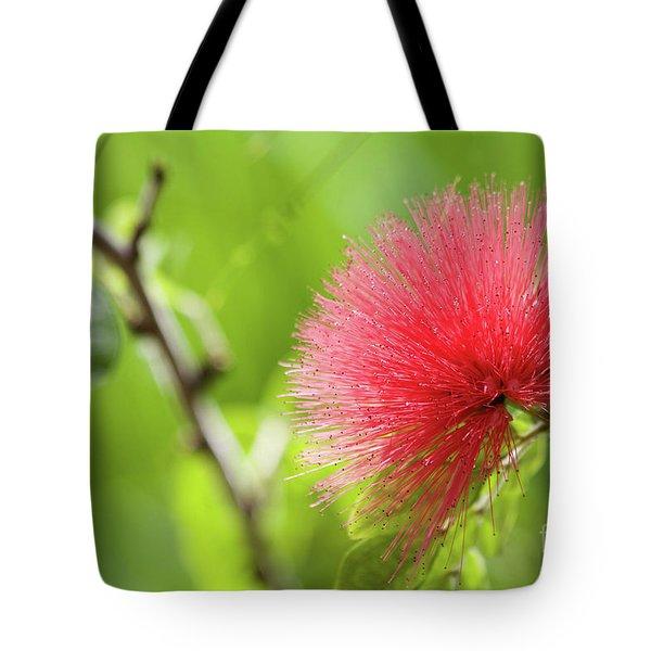 Pink Tote Bag by Afrodita Ellerman