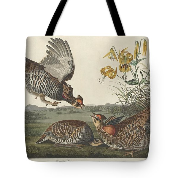 Pinnated Grouse Tote Bag by Rob Dreyer