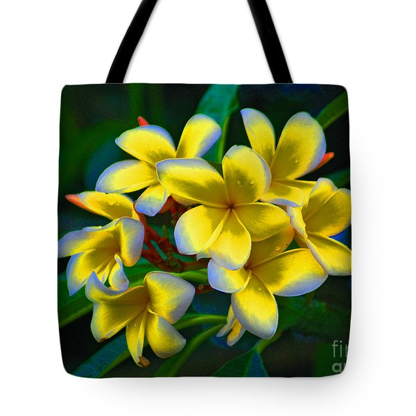 Tote Bag featuring the photograph 1- Plumeria Perfection by Joseph Keane