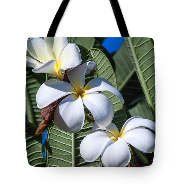 Plumeria Tote Bag by Roselynne Broussard
