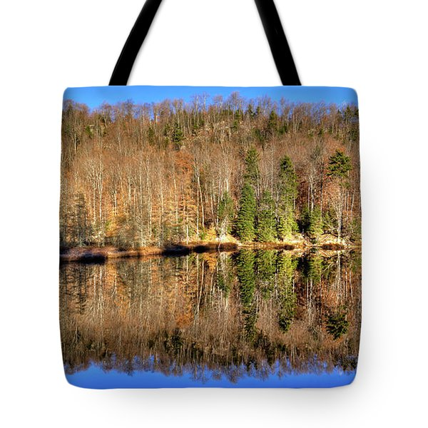 Tote Bag featuring the photograph Pond Reflections by David Patterson