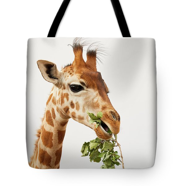 Portrait Of A Rothschild Giraffe  Tote Bag