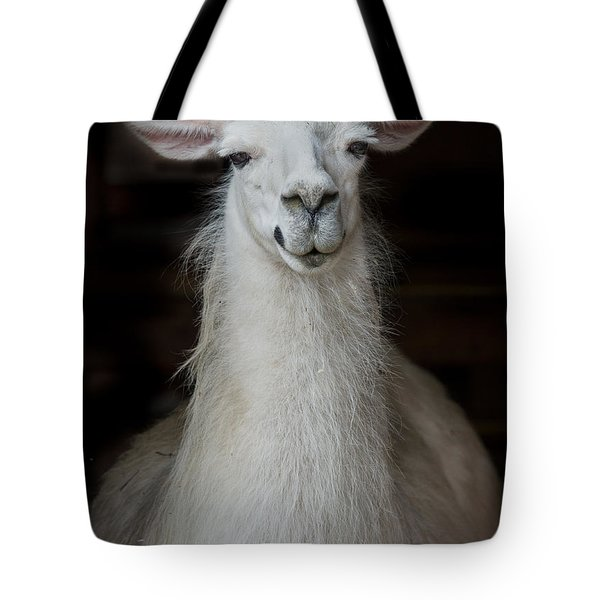 Portrait Of An Alpaca Tote Bag by Greg Nyquist