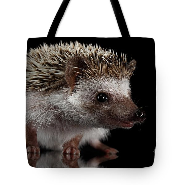 Prickly Hedgehog Isolated On Black Background Tote Bag by Sergey Taran