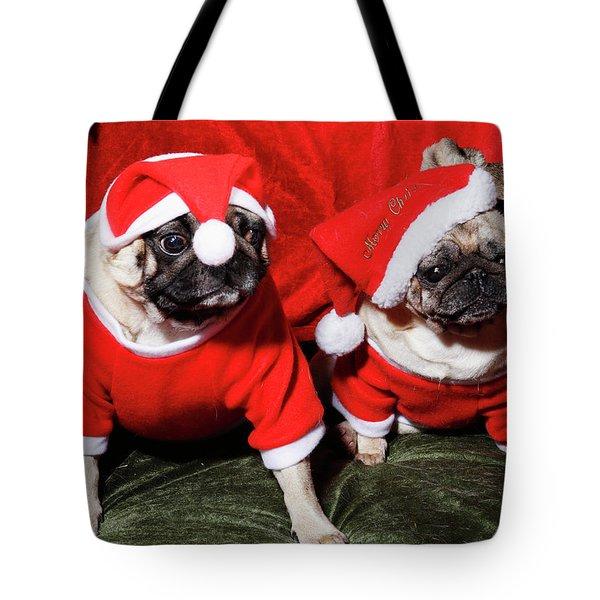 Pugs Dressed As Father Christmas Tote Bag