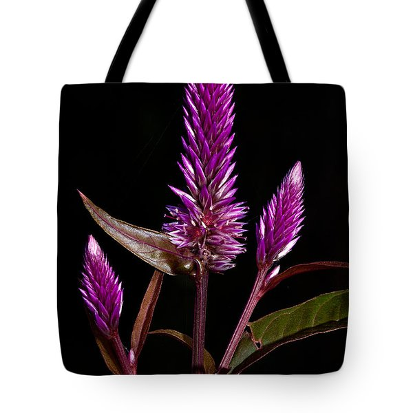 Purple Tote Bag by Christopher Holmes