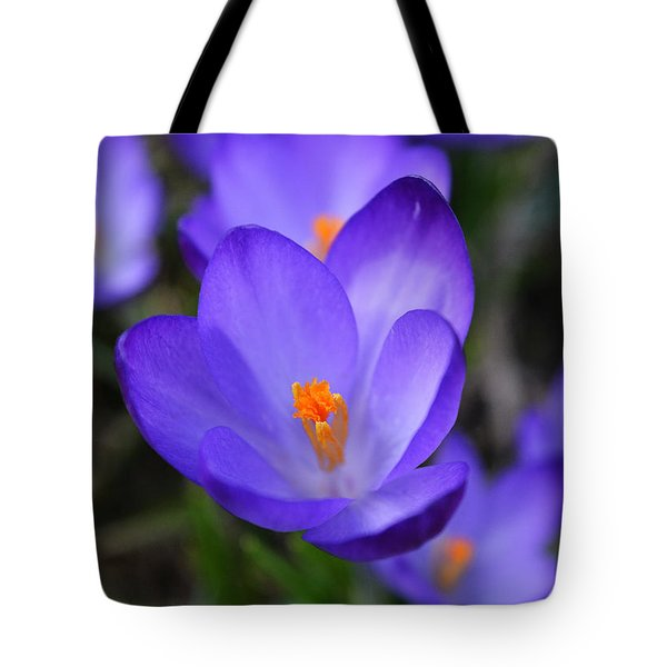 Purple Crocuses - 2015 Tote Bag
