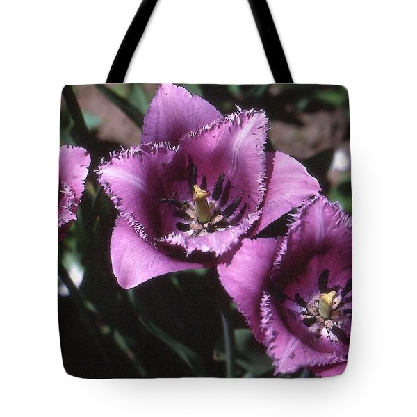 Purple Flowers Two  Tote Bag by Lyle Crump