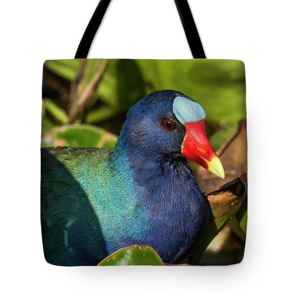 Tote Bag featuring the photograph Purple Gallineulle by Michael D Miller