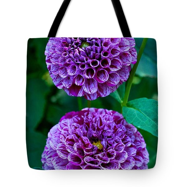 Purple Passion Dahlia  Tote Bag