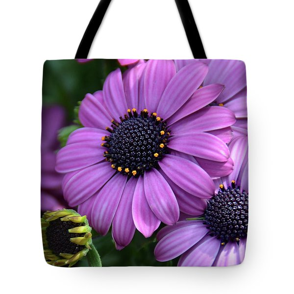 African Daisy Tote Bag by Ronda Ryan