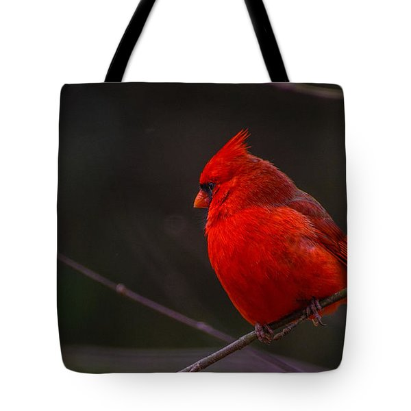 Quality Quiet Time  Tote Bag by John Harding
