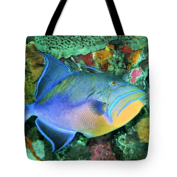 Queen Triggerfish Tote Bag