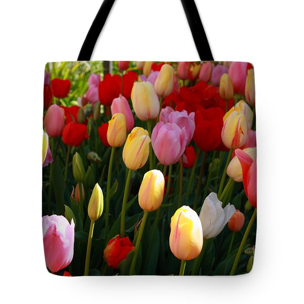 Tote Bag featuring the photograph Rainbow by Elaine Teague