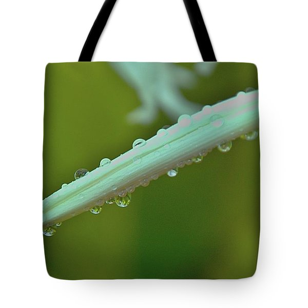 Raindrop Visioins Tote Bag by Michael Courtney