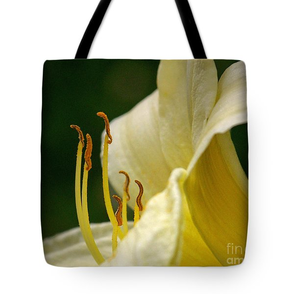 Ready To March Tote Bag by Sue Stefanowicz