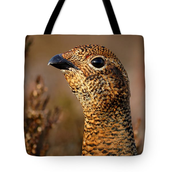 Red Grouse  Tote Bag