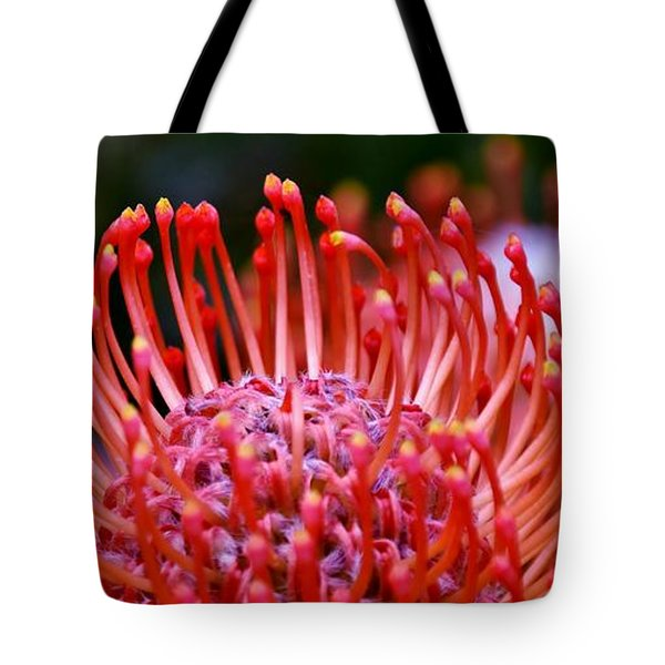 Red  Pincushion Protea Tote Bag by Werner Lehmann