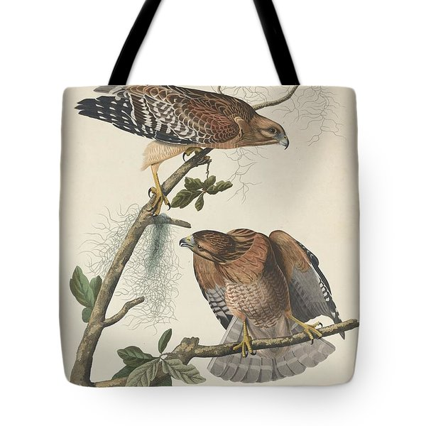 Red Shouldered Hawk Tote Bag by Anton Oreshkin