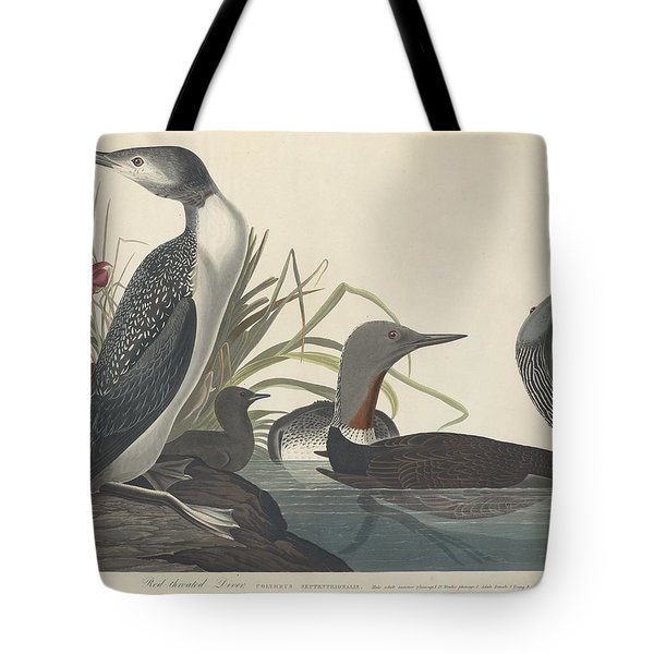 Red-throated Diver Tote Bag