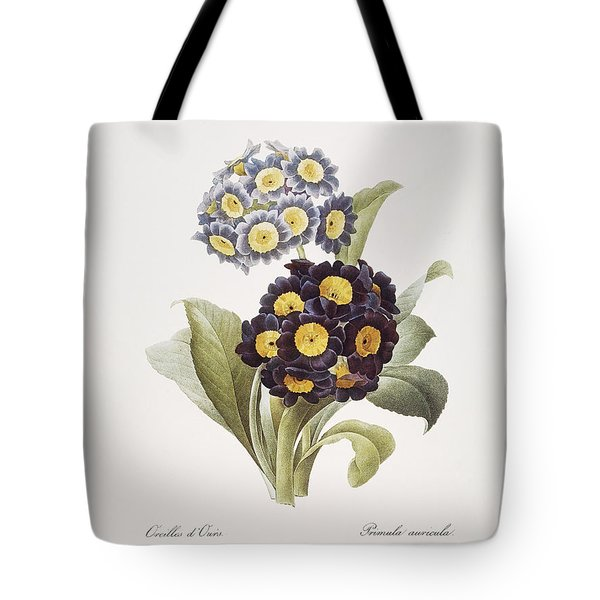 Redoute: Auricula, 1833 Tote Bag by Granger
